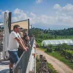 Prosecco wine tour